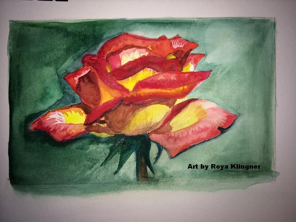 rose-watercolour5414.jpg